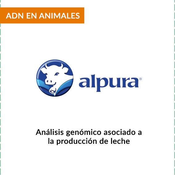 CLIENTES-ALPURA
