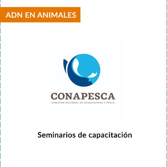 CLIENTES-CONAPESCA