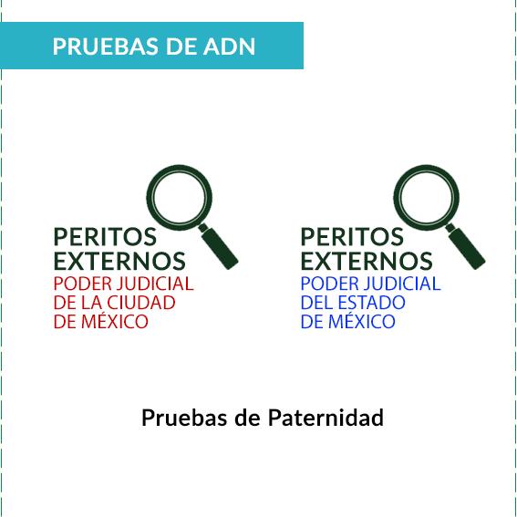 CLIENTES-PERITOS-2-copia