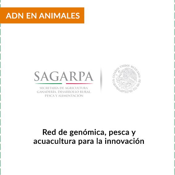 CLIENTES-SAGARPA